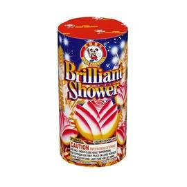 Brilliant Shower (1)